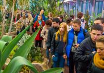 В Ночь музеев некоторые петербуржцы не смогли попасть ни в один из них