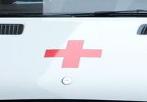 В Москве на коляску упал старый ясень, ребенок госпитализирован