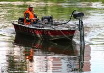 Распил камыша: в Москве стартовали работы по расчистке водоемов