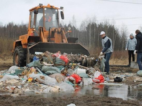 Петербуржцы выявили в городе 204 нелегальные свалки