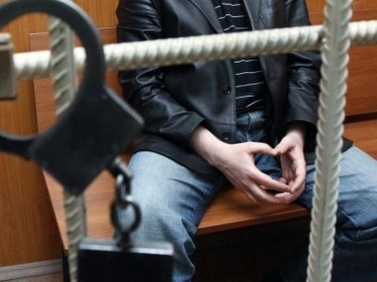 ВПетербурге вынесли вердикт педофилу, заманивавшему девушек вмашину
